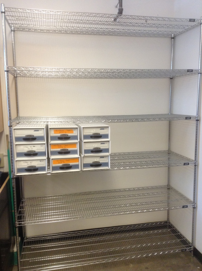 The new shelves where rice seeds for the sequencing project I work on will be stored.