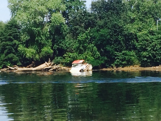 An abandoned boat out in the river by our hotel.
