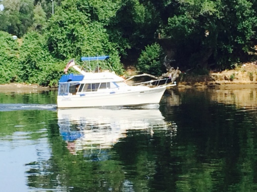 The abandoned boat was an anomaly. Most of the boats were sailing around like this one.