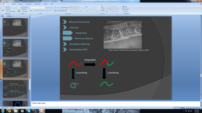 Here's a picture of one of my PowerPoint slides from today's lab presentation.