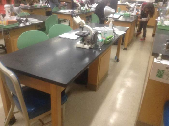 One of the lab benches of the room I teach in.